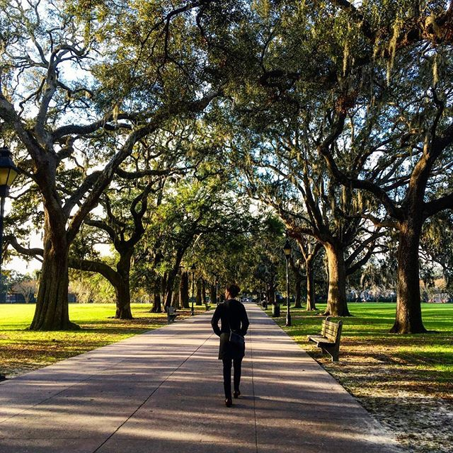 No trip to Savanna is complete without a trip to Forsyth Park where you can stroll leisurely while checking out the fountain, fragrant garden and 300 year old oak tree! Explore views of historic buildings and squares as you wander the park and city, drink in hand - no open container laws here!  Southern hospitality and home cooking making it a great place to drink and eat and drink and eat. Maybe you'll even make friends with a ghost – there are a lot of haunting stories to hear! #wheretowednesday #letthetriptakeyou #travelworthy #wanderlust #vacation #travel #travelgram #savannah #georgia #forsythpark #oak