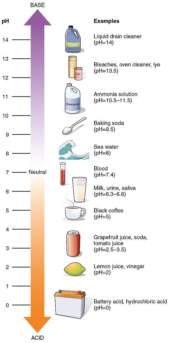 Acidity is anything below 7 on the pH scale, Alkaline is anything above 7, and neutral (such as water) is a pH of 7.
