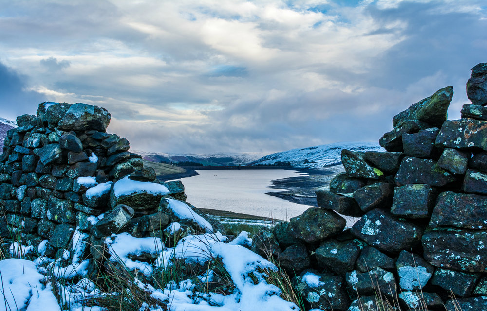 First signs of winter, Harrogate. Nikon D7100 // 24mm f1.8