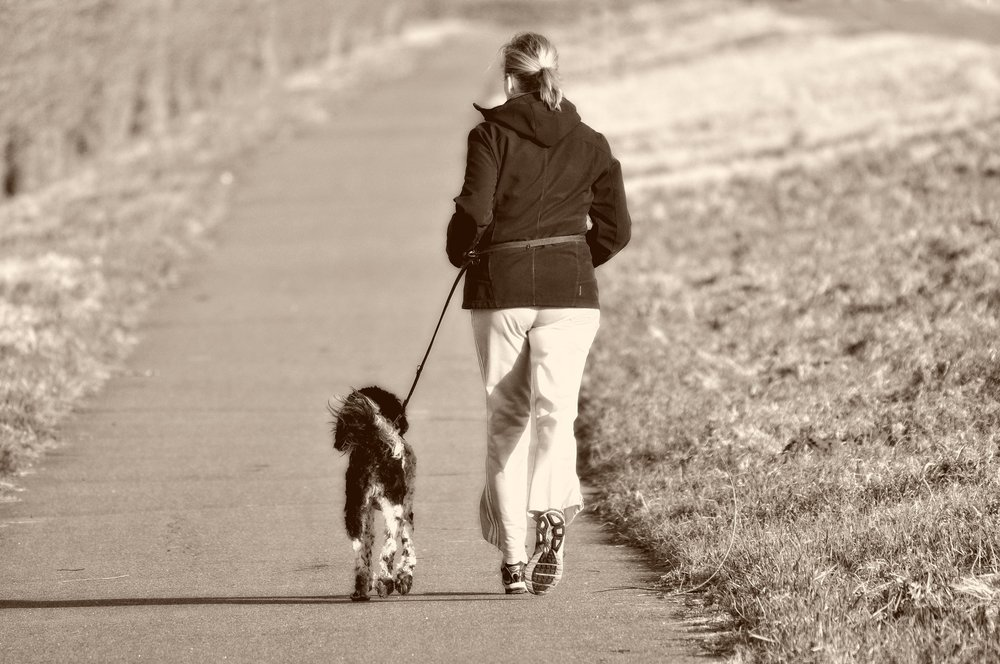 woman walking dog.jpg