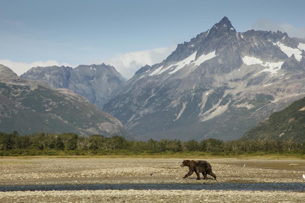 SylerPR_Alaska_50.jpg