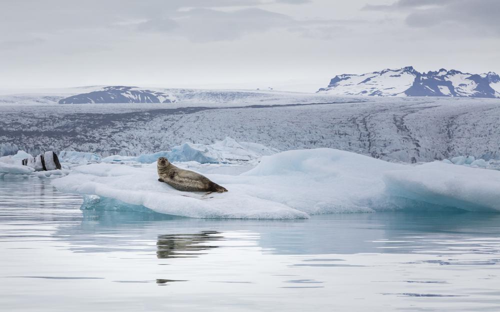SylerPR_Iceland_39.jpg