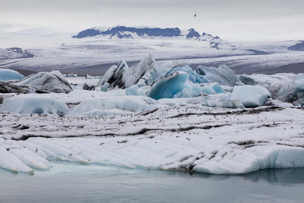 SylerPR_Iceland_42.jpg