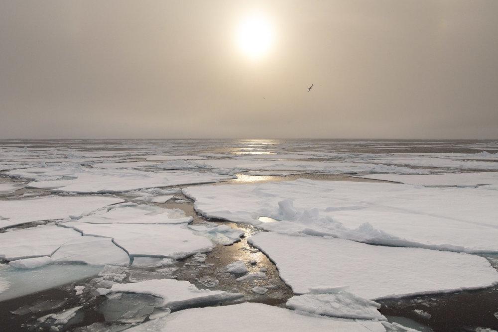 SPR_Svalbard-8.jpg