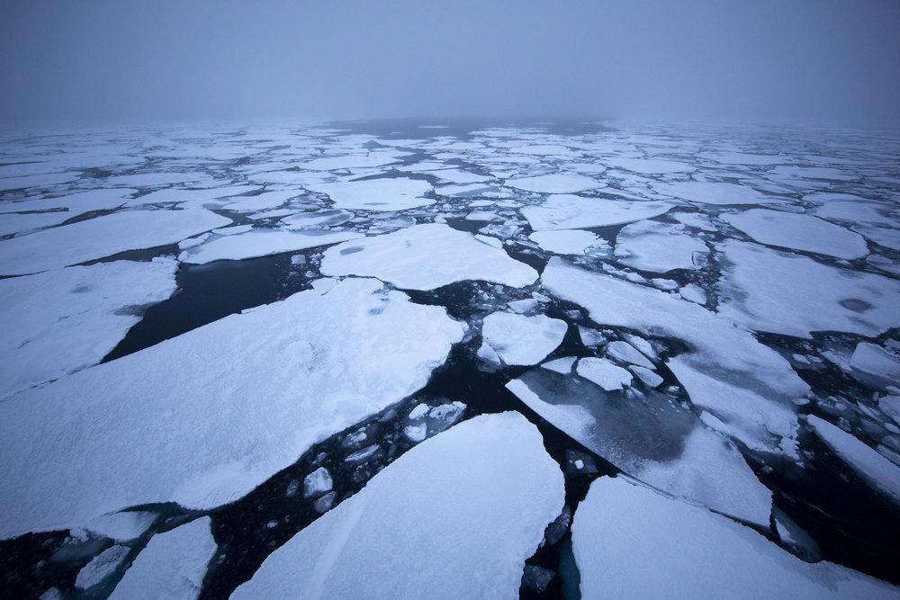 SPR_Svalbard-30.jpg