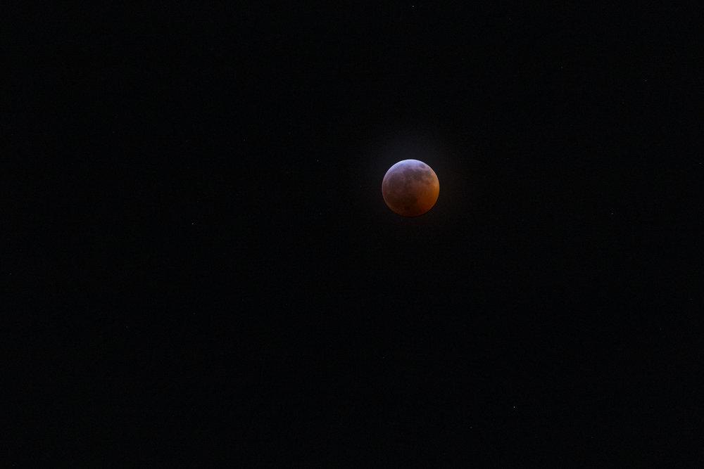 blood_wolf_moon_1_full.jpeg