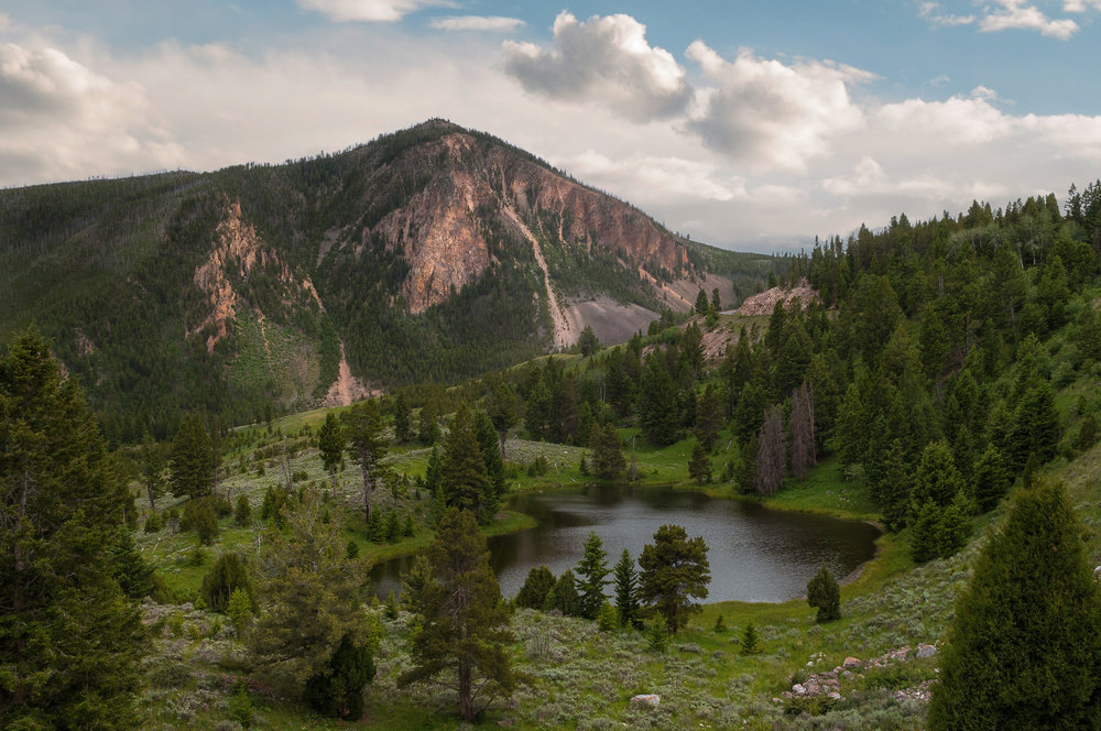 Little-Bighorn-Yellowstone-(6-21-16)-35.jpg