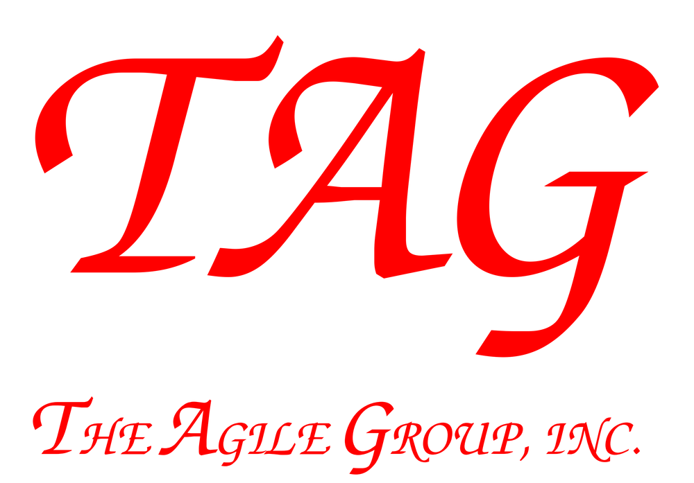 The Agile Group - Full Size_1.png