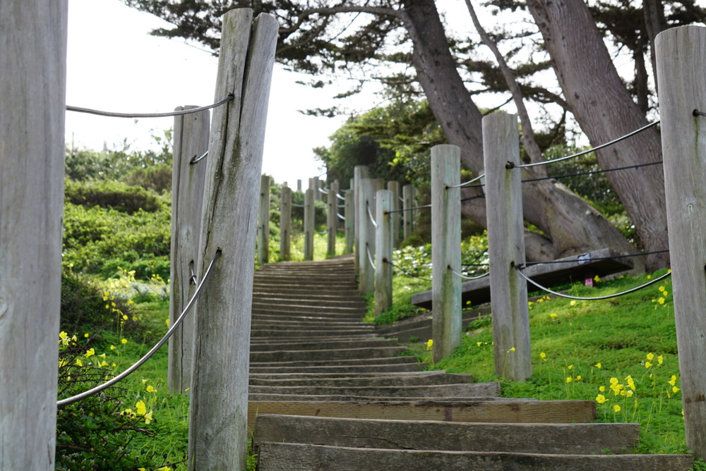 Here's a shot of the stairs at China Beach in north San Francisco, one of the many inspirational points that made us realize full-time travel was the right move for us.