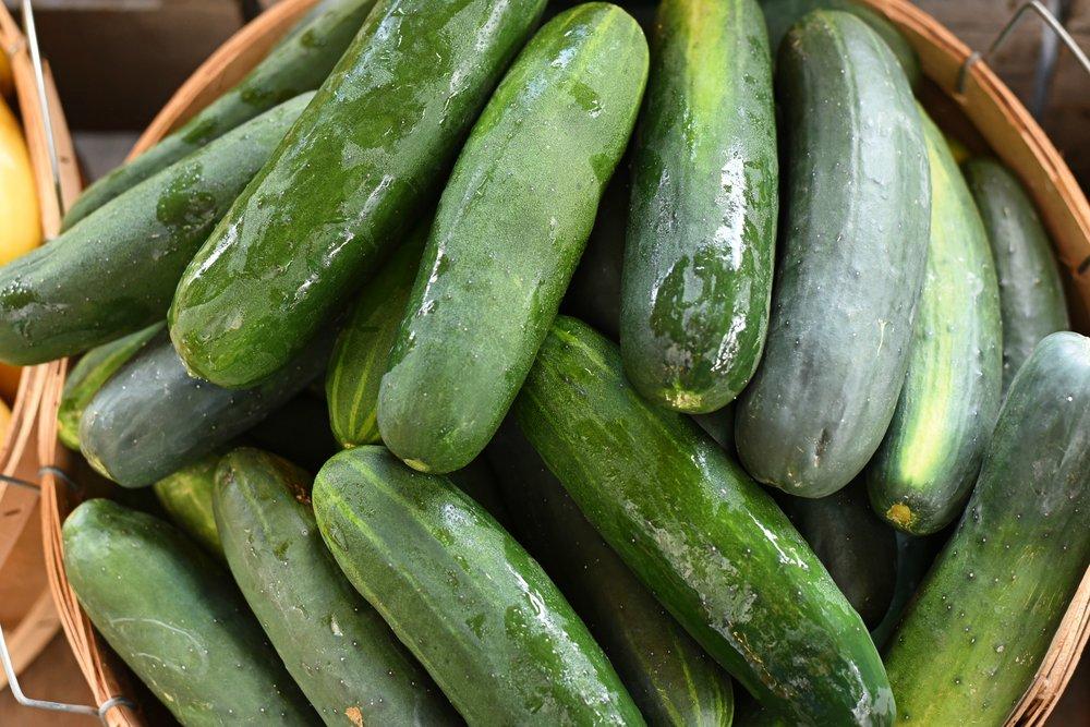 Serra green cucumbers.jpg