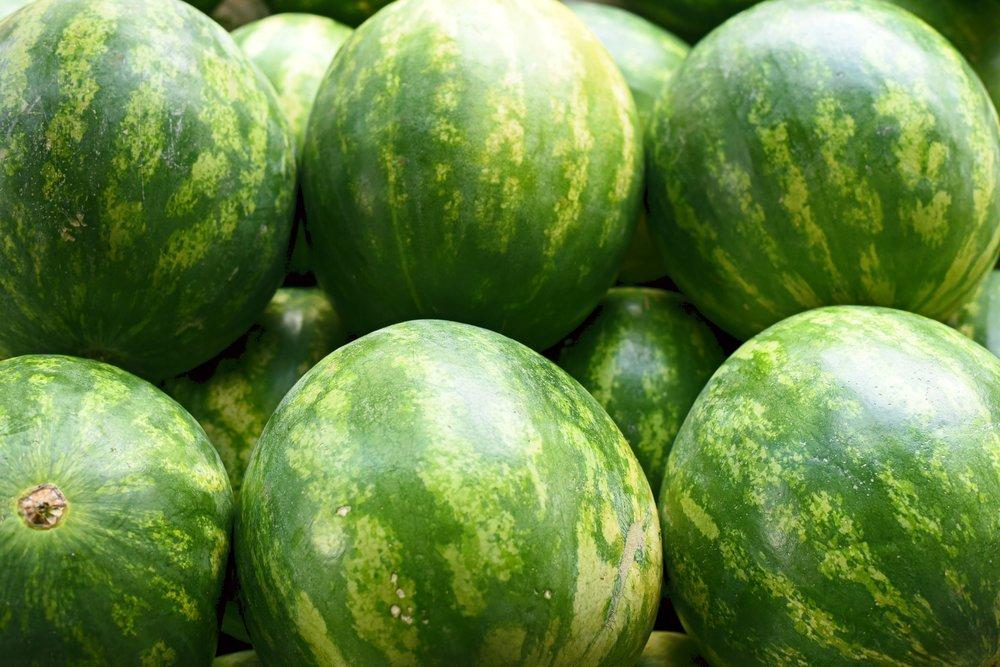 serra watermelon.jpg