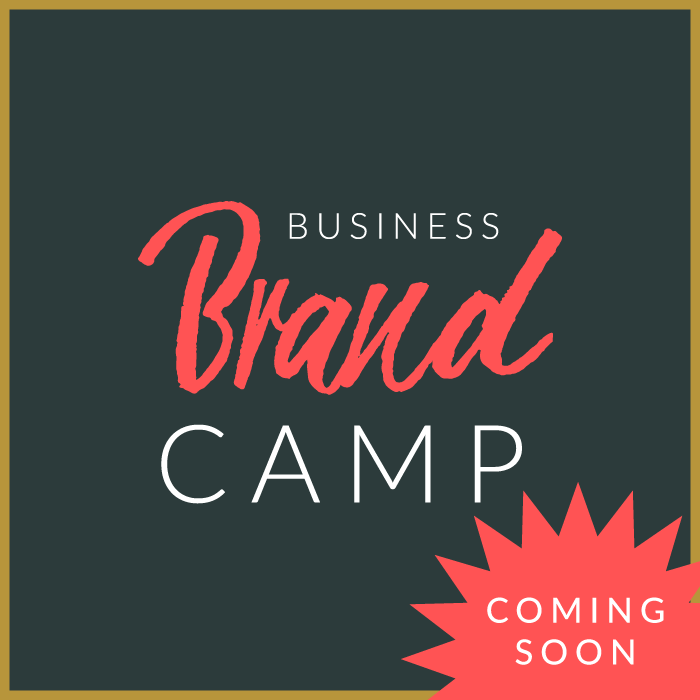 Workshop-images-Biz-Brand-Camp.png