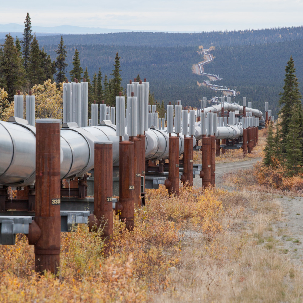 The Alaska Pipeline goes on for 800 miles.
