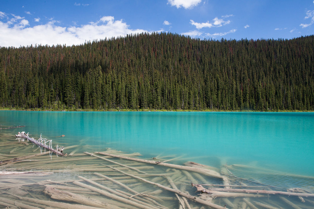 Banff and Jasper Nat'l Parks