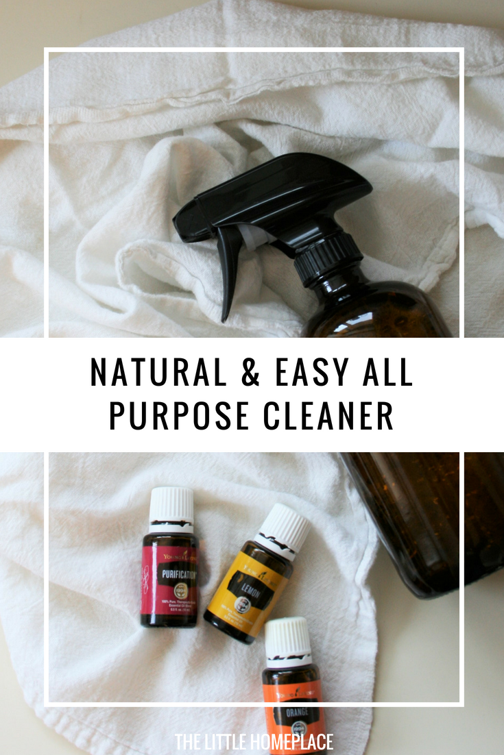 Natural & Easy All Purpose Cleaner Recipe.png
