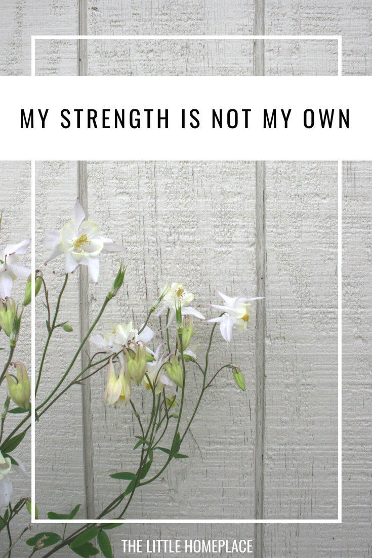My Strength is Not My Own | The Little Homeplace