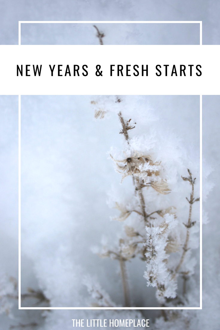 New Years & Fresh Starts | The Little Homeplace