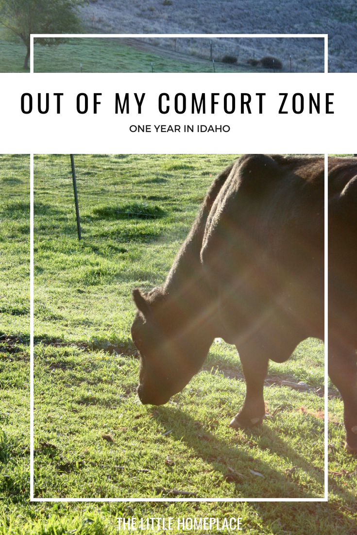Out of My Comfort Zone - One Year in Idaho | The Little Homeplace
