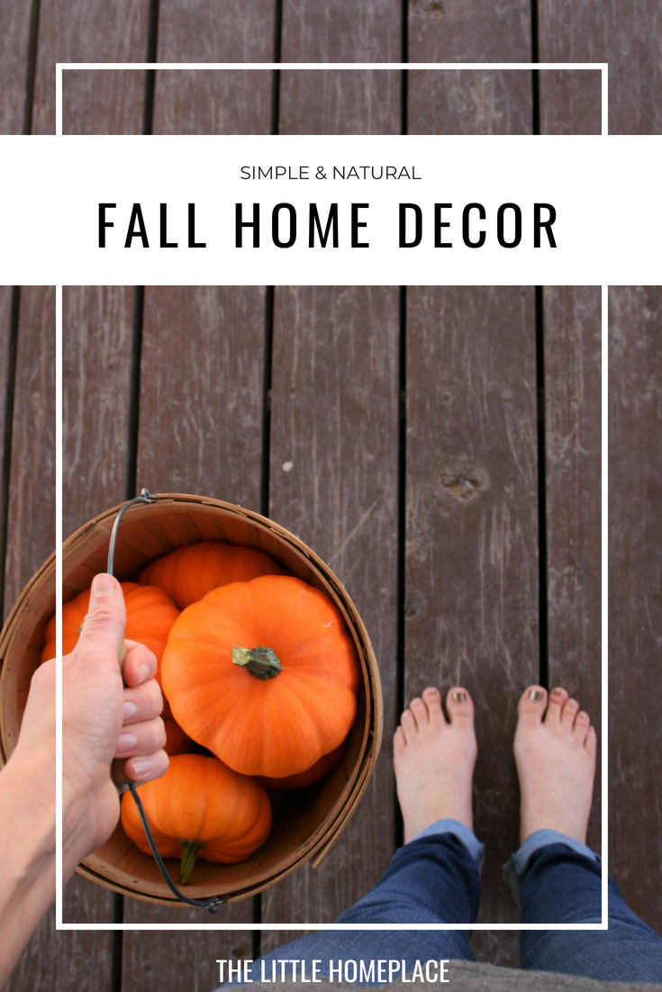 Simple & Natural Fall Home Decor | The Little Homeplace