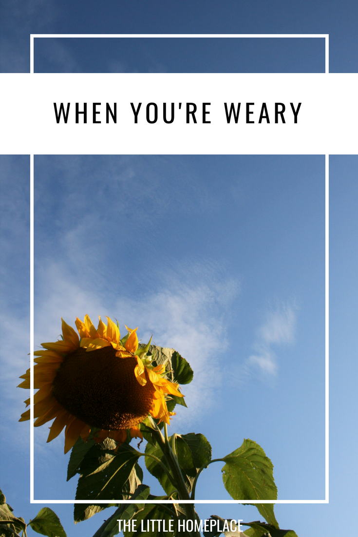 When You're Weary | The Little Homeplace
