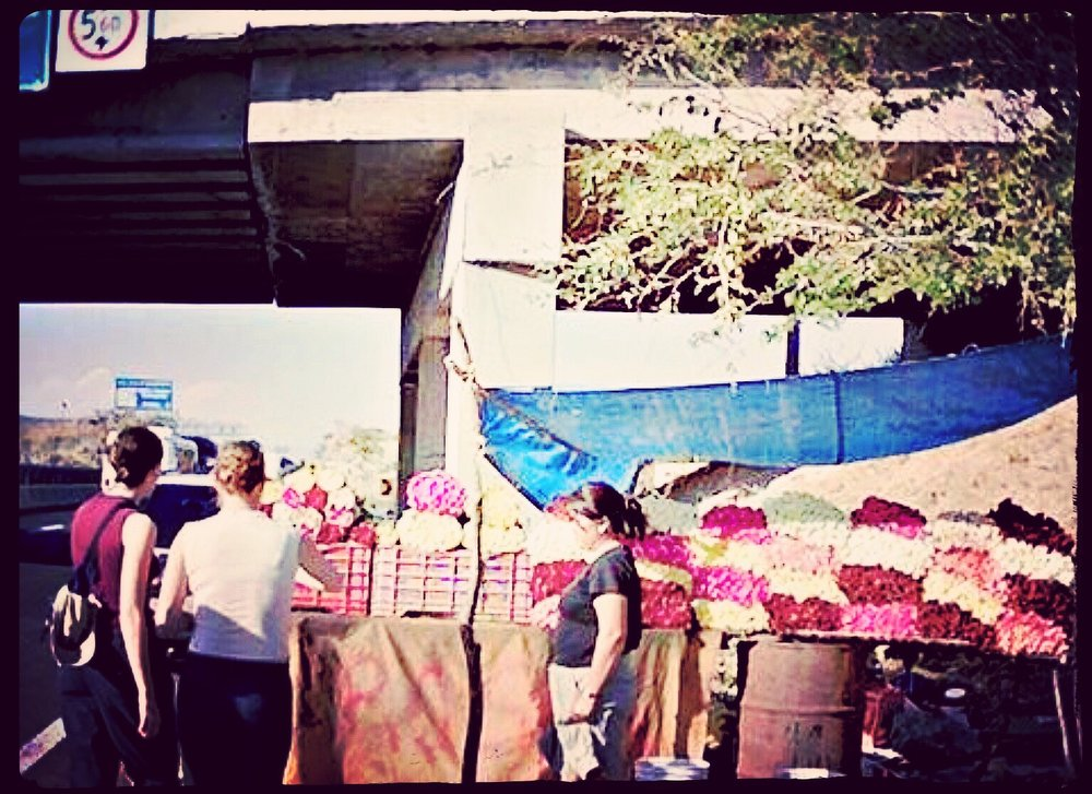 RosesOutsideofMexicoCity2004.JPG