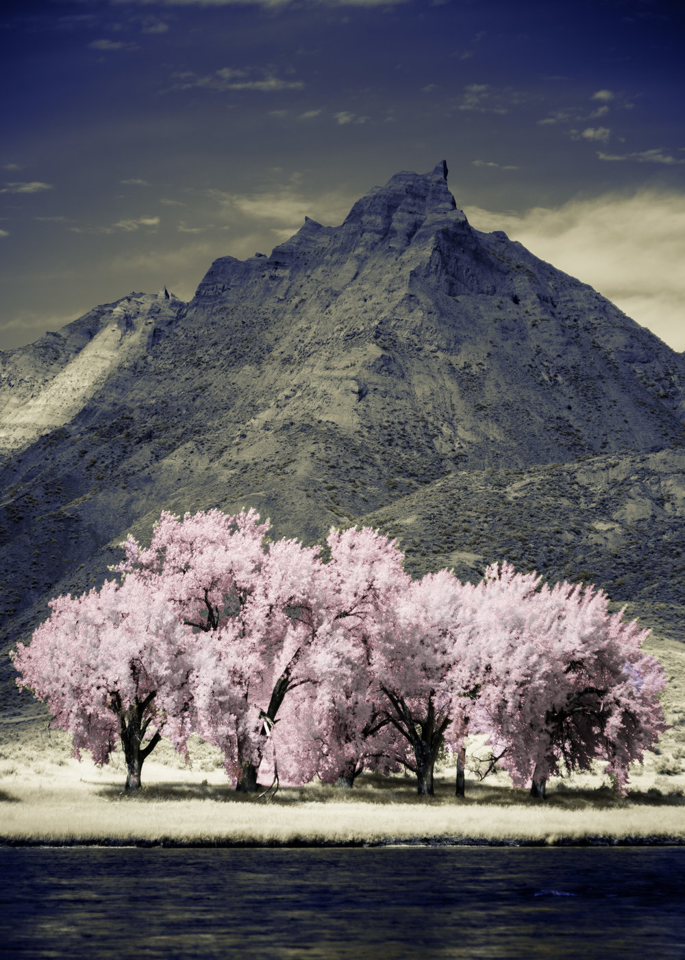 View from the Hagadone Homestead in Infrared