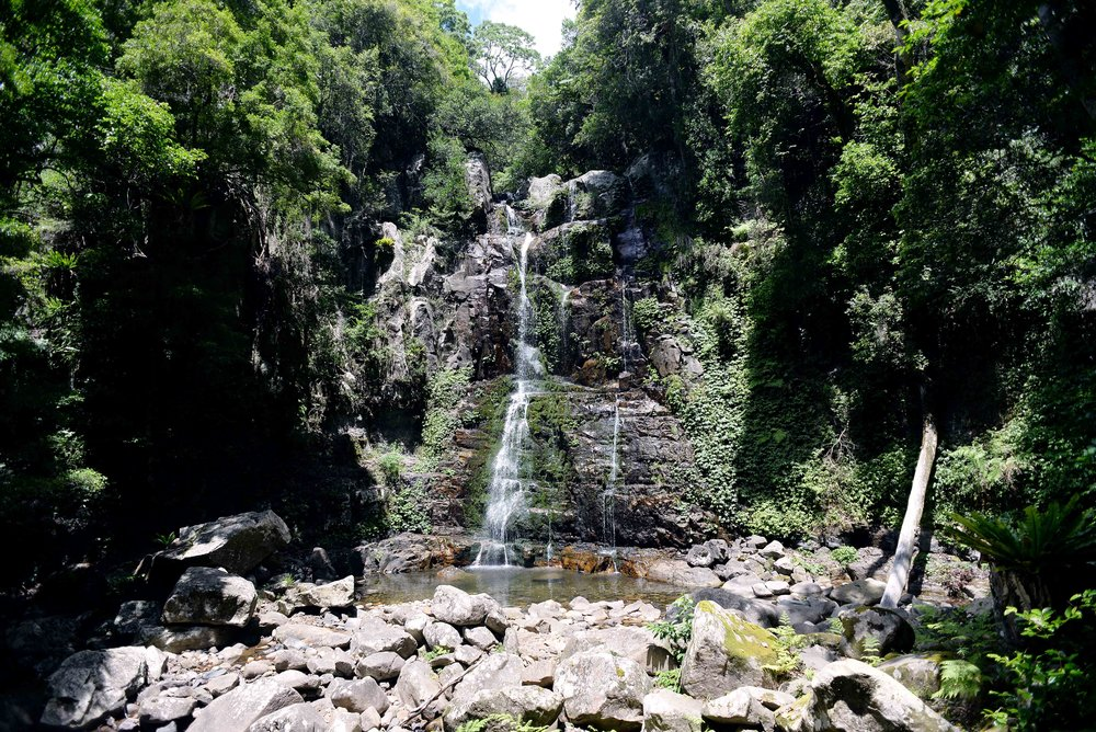 lyrebird falls minnamurra