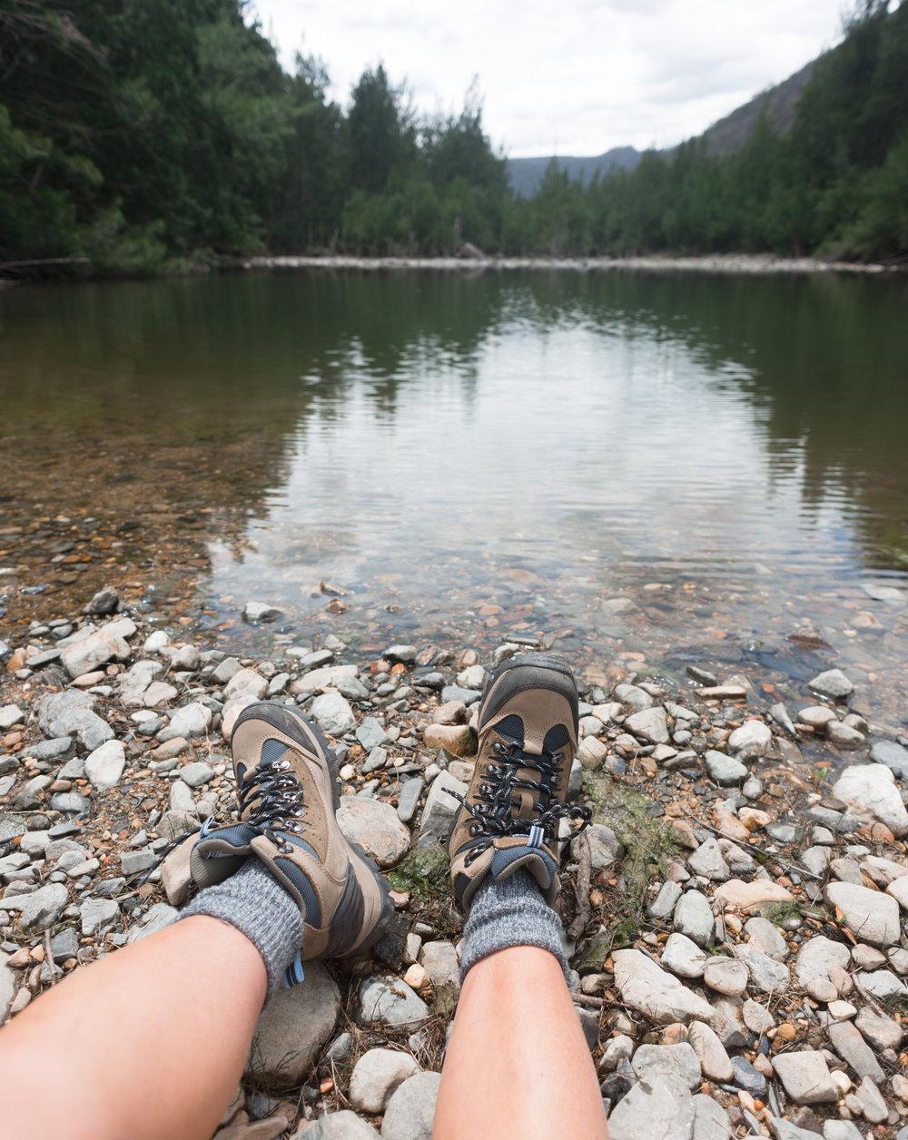 shoalhaven riverbank
