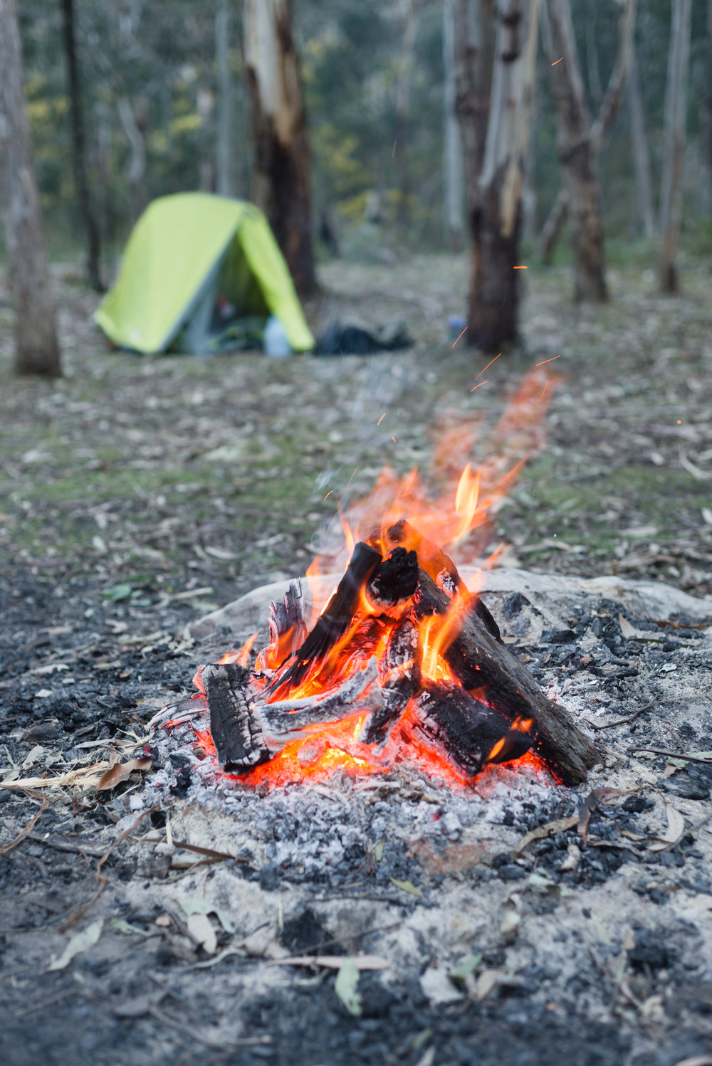 newnes camping ground nsw fire