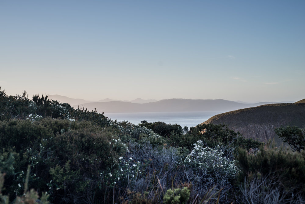 cape bruny sunset tasmania