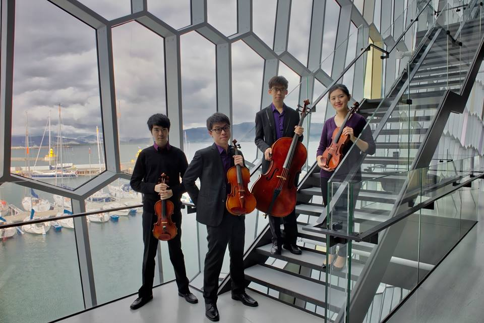 Performance at Harpa Concert Hall in Iceland (2017)