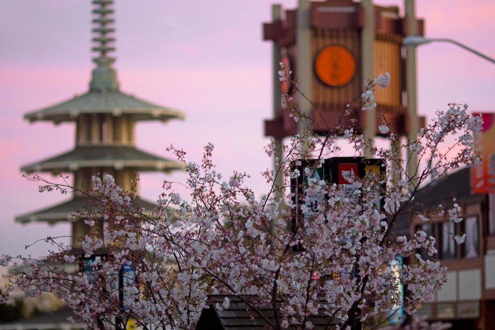 Japantown.jpg
