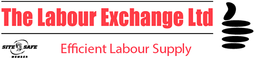 The Labour Exchange Ltd