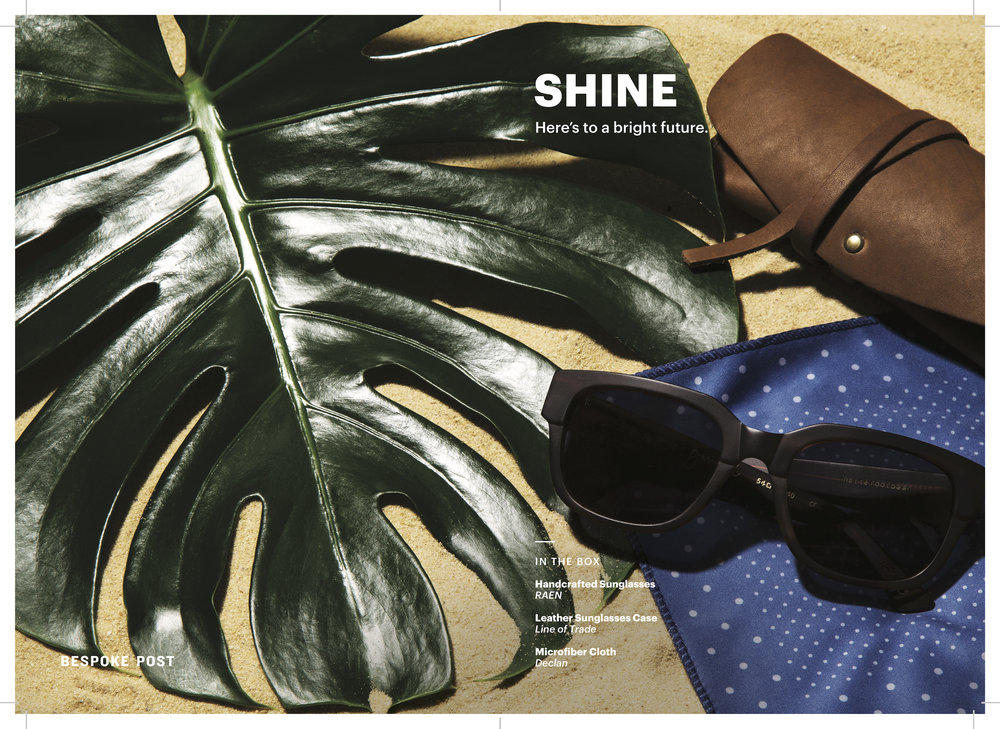 shine-1.jpg