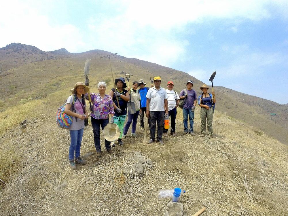 Apoyo a iniciativas de conservación en Villa María del Triunfo, Lima-Perú (2016)