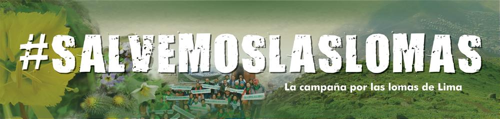 salvemoslaslomas-01.png
