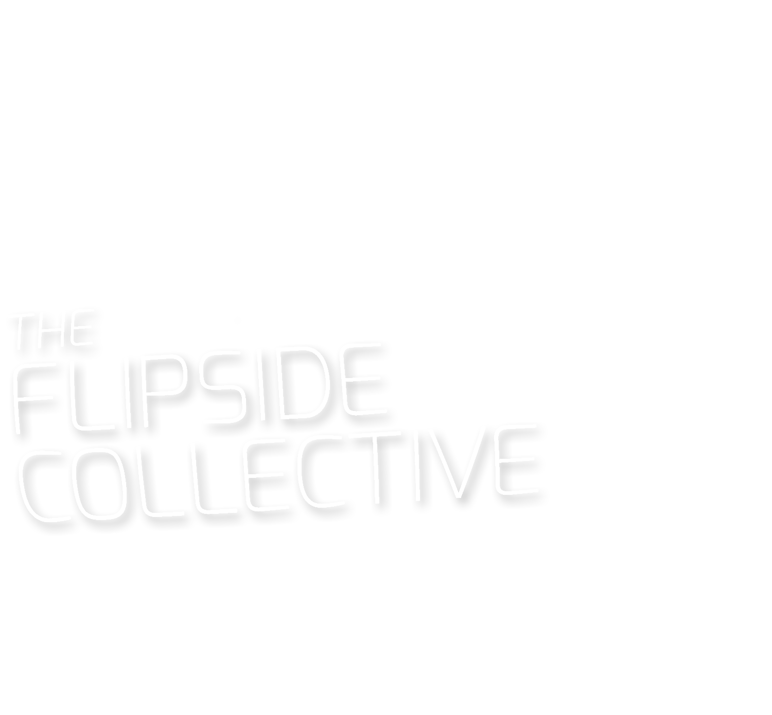 THE FLIPSIDE COLLECTIVE