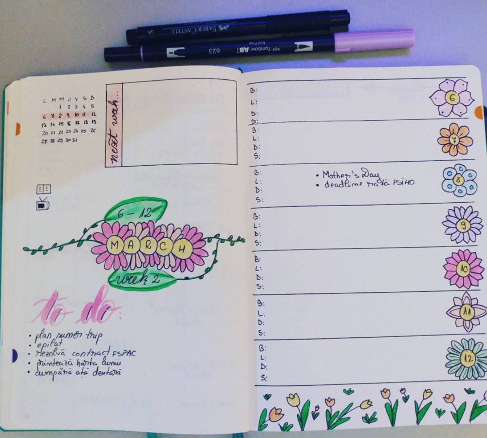 Image from  Ruby_BulletJournals