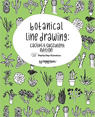 Botanical Line Drawing: Cactus & Succulents
