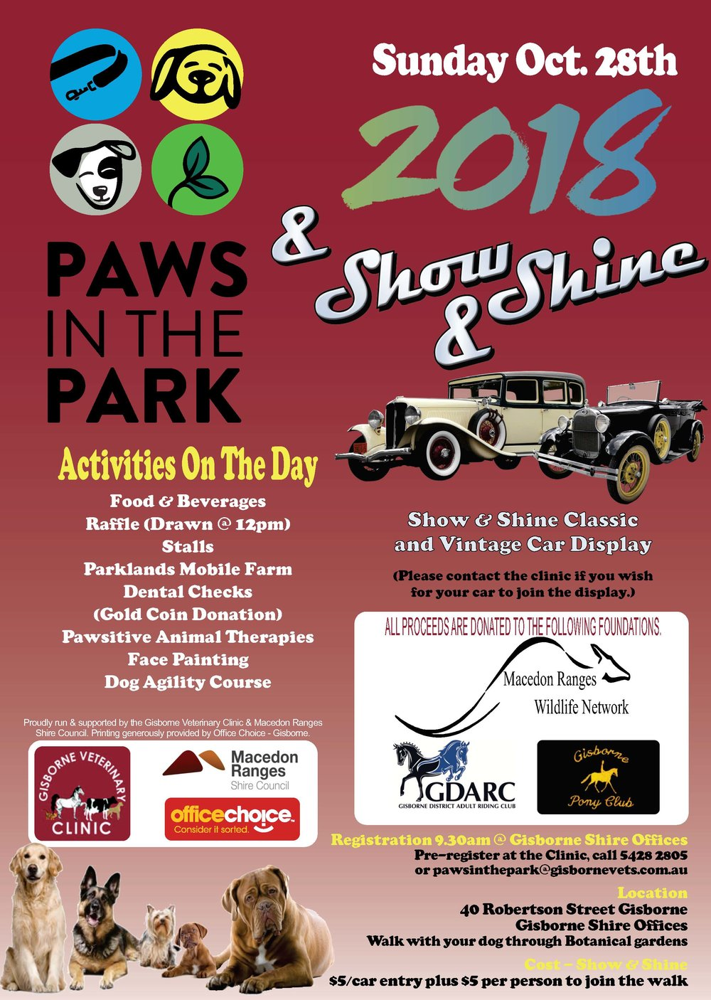 Paws in the park..jpg