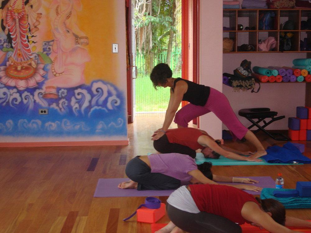 therapeutic-yoga-qigong.jpg