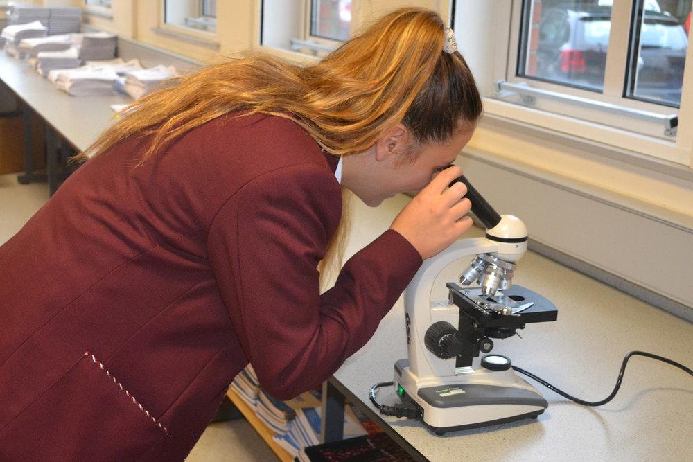 biology2a.jpg
