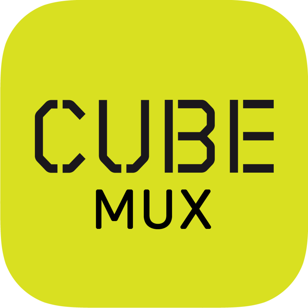 Cube Mux - A joint venture with 100% Media Group to develop DTT services in the South Wales and West area.