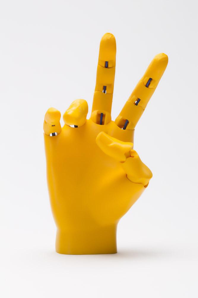 kreator-motion-3D-model-hand-PET.jpg