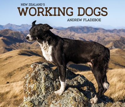 Working-Dogs-cover_72.jpg