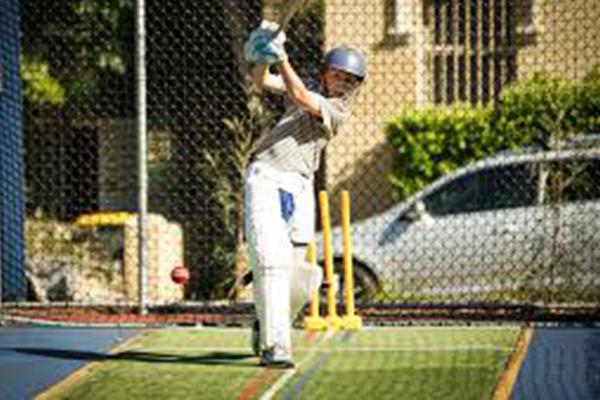 Cricket3.png