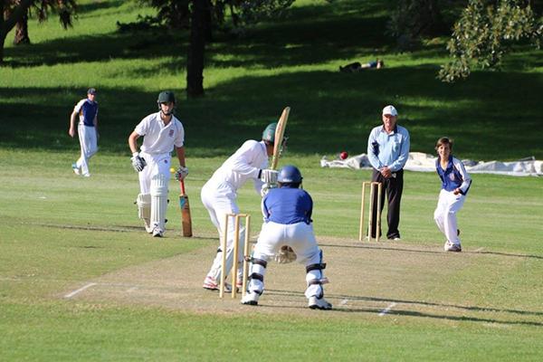 Cricket4.png