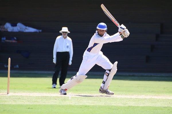 Cricket6.png