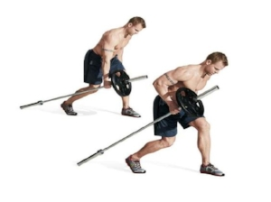 Landmine Single Arm Row