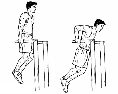 Dips Exercise